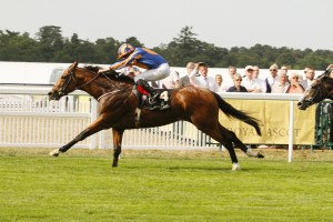 "St James's Palace Stakes (Group 1) 1m, 3yo colts GLENEAGLES is in danger of getting a fan club after he did it yet again, winning his third Group 1 race of the season with a convincing burst of acceleration to put the St James's Palace to bed at the furlong pole. RELATED LINKS Race result Certainly the punters who piled into the dual Classic winner were never worried, with one racegoer collecting £80,000 from his £150,000 punt on the 8-15 winning favourite. Victory for Gleneagles ensured yet another racing record for winning trainer Aidan O'Brien. This was win number seven in the St James's Place Stakes for Ireland's champion trainer, overtaking the record he shared with Mathew Dawson who trained during the 19th century. The trainer thinks his latest victor could be the best ever, as he said: ""I am delighted. He is a horse who takes everything in his stride. For me is very like Giant's Causeway but he has more speed than Giant's Causeway. This horse will relax and quicken and that is what makes him a little bit different. I don't think we have ever had a miler as good as him."" The clash of the Classic colts failed to play out as France's 2,000 Guineas winner Make Believe could not match the turn of foot employed by Gleneagles. Godolphin's 25-1 shot Latharnach was left to chase home the winner. Michael Tabor, one of the winning owners, ranked Gleneagles as ""a very special horse"". ""He has done everything we hoped he would,"" said Tabor, who commented on the decision to bypass the Investec Derby after wins in the 2,000 Guineas at Newmarket and Irish equivalent at the Curragh. ""There was talk but as far as we were concerned it was never a possibility. We'll discuss what we are going to do next but there are so many options and it is exciting to have a horse of this calibre."" Winning rider Ryan Moore said: ""He's got a very good turn of foot. It was a muddling race and messy early on. Frankie [Dettori] had [on Consort] his own way up front. ""He's a pleasure to ride and getting better. I never really got serious with him, just hands and heels."" For connections of Consort, the decision to jump from Listed class to Group 1 was vindicated, and Harry Herbert of owners Highclere Thoroughbreds, said: ""It's tough to make all and I thought for a moment he might win but he tired close home and it was a bit frustrating he wasn't second. But that was very encouraging."" Second spot opens up a new landscape for Latharnach, whose trainer Charlie Appleby said: ""When you are finishing second behind a horse who has won two Guineas you would be confident to take our chance in a Group 1 again."" The Qatar Sussex Stakes could provide an epic showdown between Gleneagles and Queen Anne winner Solow, with Paddy Power making Gleneagles the evens favourite and Solow a 6-4 chance.12 June 2015;  GLENEAGLES and Ryan Moore run out easy winners of The St James's Palace Stakes at Ascot.  © Peter Mooney, 6, Cumberland Street, Dun Laoghaire, Co. Dublin, Ireland.    Tel:  00 353 (0)86 2589298"