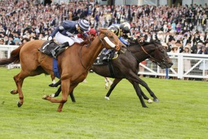 """King's Stand Stakes (Group 1) 5f, 3yo+ ROBERT COWELL once again illustrated why he is such a fine trainer of sprinters as he won the King's Stand for the second time in five years with 20-1 chance Goldream. Prohibit provided Cowell with the first Group 1 of his career in the race in 2011, and Goldream got his head in front where it mattered most, defeating 50-1 outsider Medicean Man in a photo-finish. RELATED LINKS Race result  Cowell has a proven history of improving sprinters recruited from other yards, and Goldream started out with Luca Cumani before moving to Cowell in 2013. Victory last month in the Palace House Stakes at Newmarket was a first Group-class success for the six-year-old, who improved again to secure a maiden Group 1 by a short head. Cowell said: """"He's been brilliant, I didn't think he'd win a race like this but I thought he'd been getting to this sort of level. """"It was a brilliant ride by Martin [Harley] and I'm pleased for the owners. I'm loving this race, it's fantastic."""" Winning jockey Harley partnered Goldream for the first time in the Palace House, and added: """"I just tacked over from the stalls as I thought all the fancied ones were drawn high. When I kicked inside the final furlong he picked up well. """"I was lucky because I was changing hands a furlong out and nearly dropped the stick! Being a Group 1 makes it a lot more special, they are hard to get.""""12 June 2015;  GOLDREAM, Martin Harley up, defeating, Medicean Man, Joao Moreira up, nearside, and Muthmir, Paul Hanagan up, in The King's Stand Stakes at Ascot.  © Peter Mooney, 6, Cumberland Street, Dun Laoghaire, Co. Dublin, Ireland.    Tel:  00 353 (0)86 2589298"""