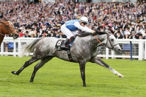 "Queen Anne Stakes (Group 1) 1m, 4yo+ SOLOW gave favourite backers the finest possible start to the Royal meeting when continuing his rise to the top of the international miling division. The Freddy Head-trained four-year-old - sent off at 11-8 - led home a one-two for France with Esoterique coming second at 16-1, while the late money for Cougar Mountain was justified as Aidan O'Brien's runner grabbed third, also at 16-1. RELATED LINKS Race result  Solow's jockey Maxime Guyon was suitably elated and said: ""This is the boss! It is amazing. I think he is the best I've ridden and when you can win at Ascot it is amazing."" Head added: ""It is beautiful. He is so easy to train, he's the number one. I thought in the race they were always going pretty slowly and I was a bit worried."" As an opening act to the 2015 meeting, the Queen Anne promised a fascinating clash between the best milers from around the world, with Hong Kong's great hope Able Friend taking on Solow, while Lockinge winner Night Of Thunder represented the top domestic form. However, two of the three were unable to mount a significant challenge, with Able Friend, who did get noticeably warm before the off, proving a big disappointment, finishing sixth. Trainer John Moore was unable to offer an immediate reason for Able Friend's lacklustre effort, and said: ""It was disappointing. The jockey offered no explanation for the run. If one was going to look for one negative when we saddled him up he wasn't his usual self, he was on the toe. He got down to the gates and the jockey did say that he was quite hot when he got down there. That is not normally him. ""You have got to remember animals travelling long distances, new environments and everything - I think the aura of the whole thing got to him but I am sure he will be okay and we will be looking to come back with either him or something else."" Toormore took the field along with Glory Awaits for company, as the major players in the betting raced in Indian file. Solow was tracked by Night Of Thunder, who was in turn stalked by Able Friend. As the race approached its conclusion, Toormore fought hard out front, but was worn down by Solow. James Doyle had angled out Night Of Thunder in an effort to keep the favourite hemmed in, but he was unable to make a sustained effort and faded into fifth. Esoterique emerged as the main danger, but Solow always held enough of an advantage, winning by a length, with Cougar Mountain a neck back in third. A return to Britain could be on Solow's agenda, as Head added: ""I want him to last, so he's not going to race that often. We will choose his races and hopefully he will run for a few more years. ""Maybe the Sussex Stakes might be a race for him if he comes out of this race well. He's a long-striding horse in terms of the Breeders' Cup so a small track like Keeneland might not suit him."" Andre Fabre said of Esoterique: ""I'm delighted by her - she ran a very good race. The winner has a very high rating, and when we go back to racing her against females she will probably win another Group 1. She definitely needs this type of going."" 12 June 2015;   SOLOW and Maxime Guyon storm to victory over Esoterique, Pierre-Charles Boudot up, and Cougar Mountain, Ryan Moore up, in The Queen Anne Stakes at Ascot.  © Peter Mooney, 6, Cumberland Street, Dun Laoghaire, Co. Dublin, Ireland.    Tel:  00 353 (0)86 2589298"