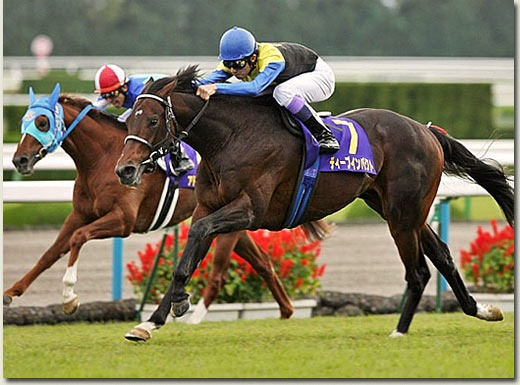 Japanese Champion Deep Impact